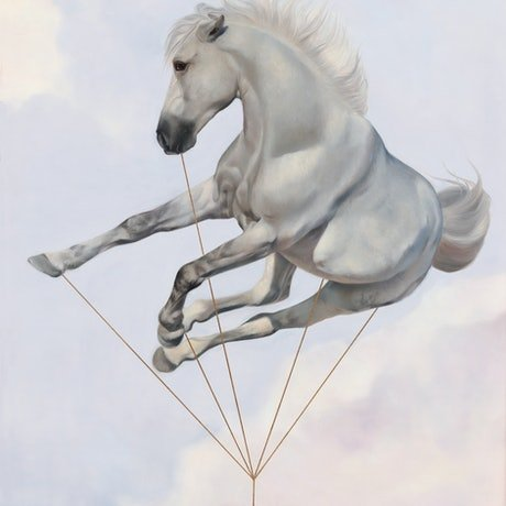 (CreativeWork) The Dreamer / Harness Reality  by Brooke Walker. Oil Paint. Shop online at Bluethumb.