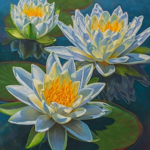 (CreativeWork) Water Lilies Fire and Ice by Fiona Craig. #<Filter:0x00007f1f9493aa20>. Shop online at Bluethumb.