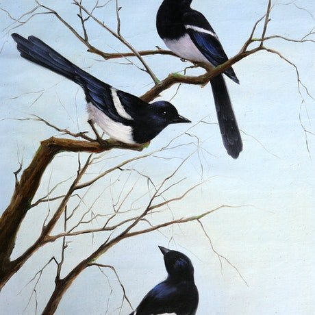 (CreativeWork) Magpies by Bai Sun. Oil Paint. Shop online at Bluethumb.