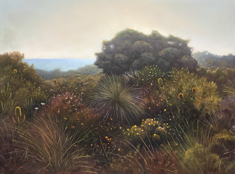 (CreativeWork) Coastal Wildflowers by Howard Sparks. Oil Paint. Shop online at Bluethumb.