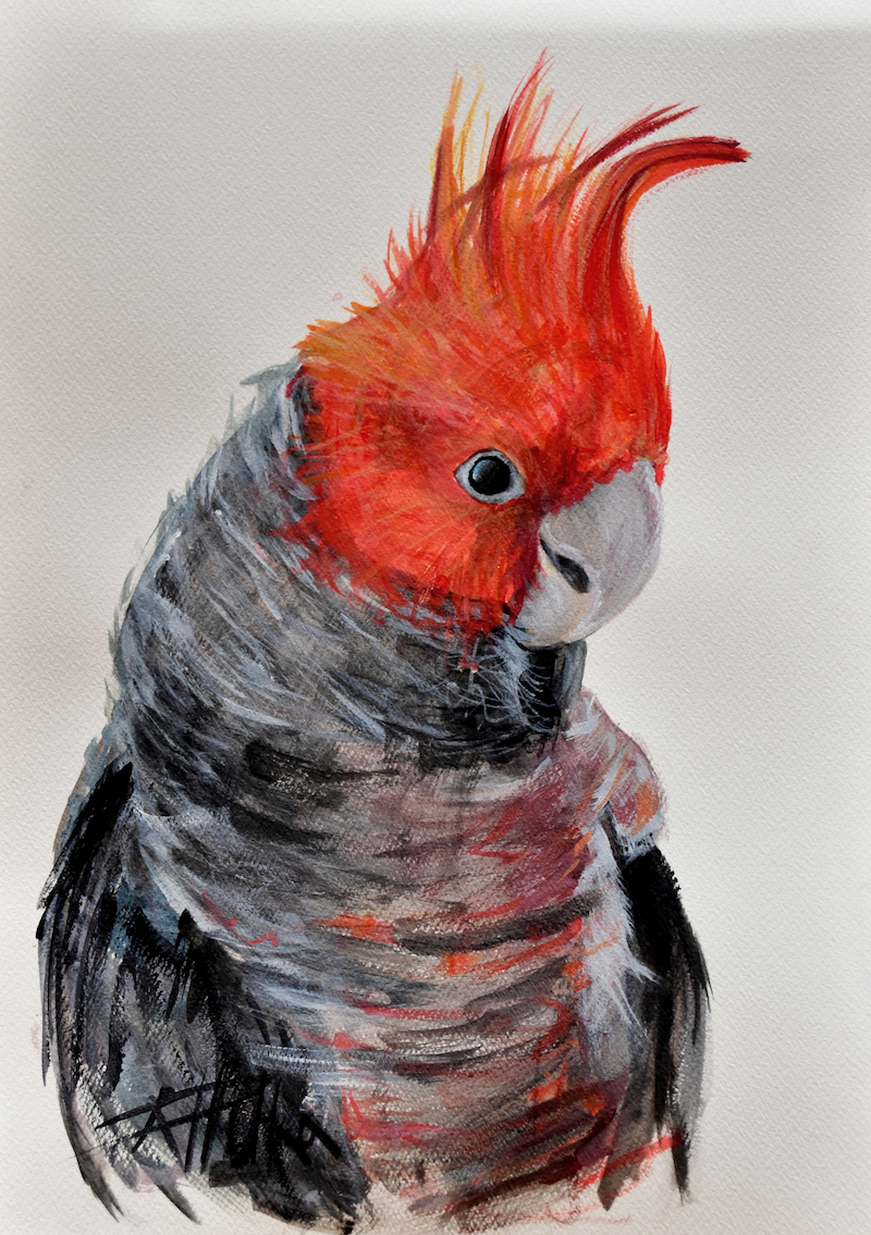 (CreativeWork) Pepper - Gang Gang study 2 by Rebecca Hill. Acrylic Paint. Shop online at Bluethumb.