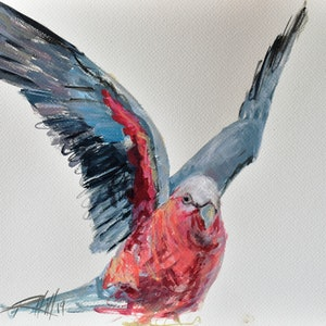 (CreativeWork) Beth -  Galah Study 1 by Rebecca Hill. #<Filter:0x00007f1f97029398>. Shop online at Bluethumb.