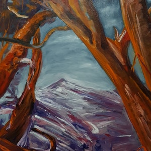 (CreativeWork) Mount Kosciuszko - Newly Framed by ALAN HEATHER-XIA. oil-painting. Shop online at Bluethumb.