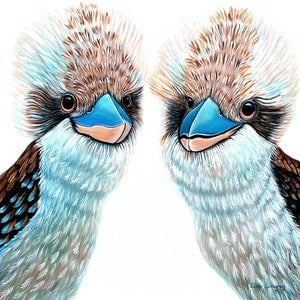 (CreativeWork) Kooky Kookaburras by Linda Callaghan. #<Filter:0x00007f97c0794de8>. Shop online at Bluethumb.
