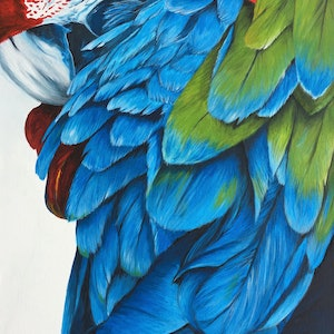 (CreativeWork) Feather Love by Jess King. acrylic-painting. Shop online at Bluethumb.
