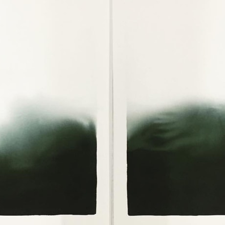 (CreativeWork) Winters Green I & II by Casey Freeman. Other Media. Shop online at Bluethumb.