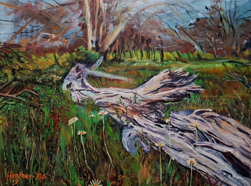 (CreativeWork) Fallen Snow Gum by ALAN HEATHER-XIA. oil-painting. Shop online at Bluethumb.