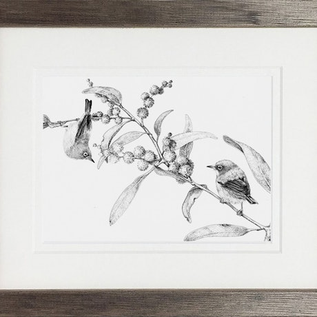 (CreativeWork) Silver-eyed by Jess Black. Drawings. Shop online at Bluethumb.