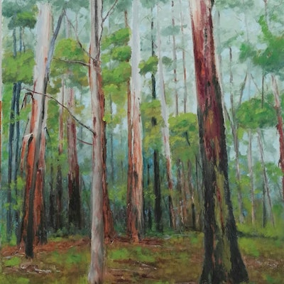 (CreativeWork) Sherbrooke Forest oil painting  by Adela Vojnovic. oil-painting. Shop online at Bluethumb.