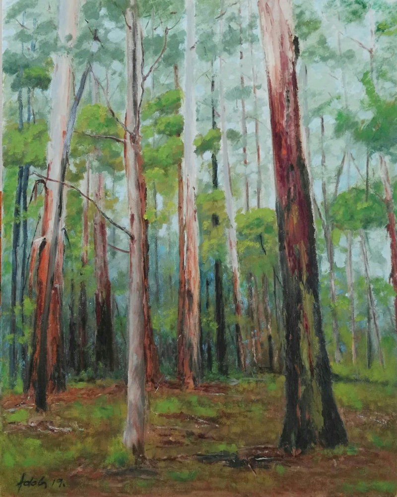 (CreativeWork) Sherbrooke Forest oil painting  by Adela Vojnovic. Oil Paint. Shop online at Bluethumb.