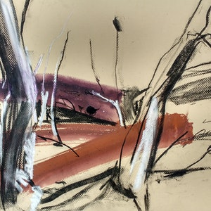 (CreativeWork) Ochre Creek by Lise Temple. drawing. Shop online at Bluethumb.