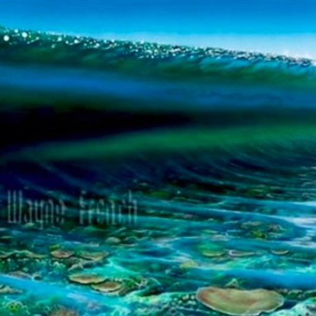 (CreativeWork) Reef Vision Ed. 42 of 150 by Wayne French. Print. Shop online at Bluethumb.