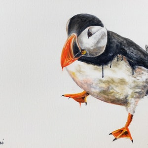 (CreativeWork) Popov Puffin by Shani White. #<Filter:0x000055c721896f50>. Shop online at Bluethumb.
