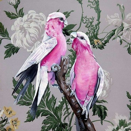 (CreativeWork) VINTAGE FLORA & FAUNA SERIES - GALAHS by HEYLIE MORRIS. Mixed Media. Shop online at Bluethumb.