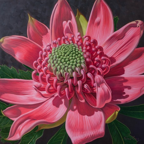 (CreativeWork) Pink Waratah Beauty 3 by Fiona Craig. Oil Paint. Shop online at Bluethumb.