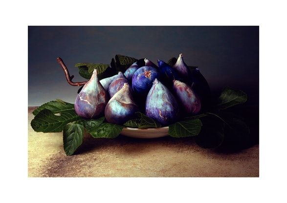 (CreativeWork) Tuscan Figs by alex buckingham. Photograph. Shop online at Bluethumb.
