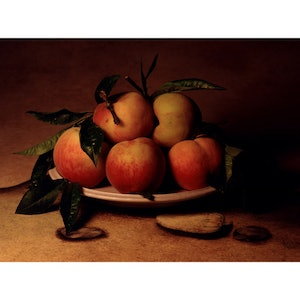 (CreativeWork) Tuscan Peaches Ed. 1 of 10 by alex buckingham. photograph. Shop online at Bluethumb.
