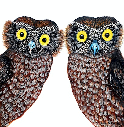 (CreativeWork) Owls - What a Hoot!  by Linda Callaghan. Acrylic Paint. Shop online at Bluethumb.