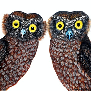 (CreativeWork) Owls - What a Hoot!  by Linda Callaghan. #<Filter:0x00007f97c06d6870>. Shop online at Bluethumb.