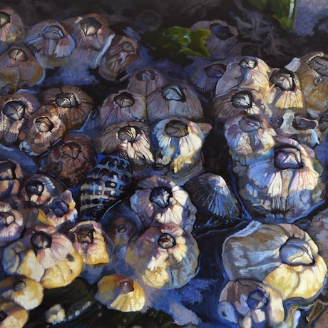 (CreativeWork) Intertidal Zone by Zoe Barber. Oil Paint. Shop online at Bluethumb.
