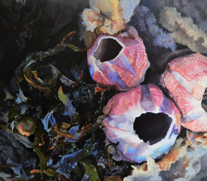 (CreativeWork) Ocean Drifters by Zoe Barber. Oil Paint. Shop online at Bluethumb.