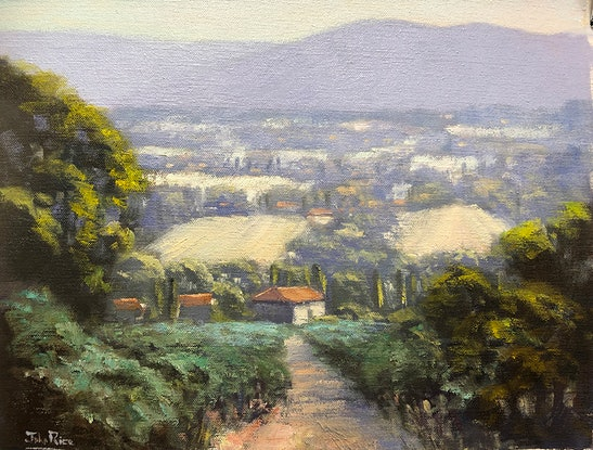 (CreativeWork) Morning In The Olive Grove by John Rice. Oil Paint. Shop online at Bluethumb.