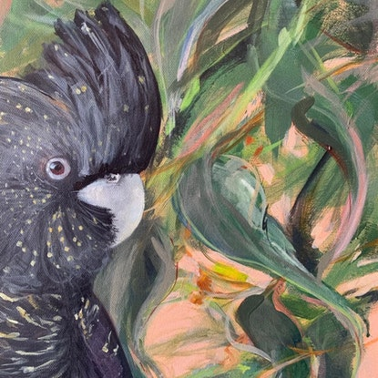(CreativeWork) Black Cockatoo - Flora and Fauna Series by Rebecca Hill. Acrylic Paint. Shop online at Bluethumb.