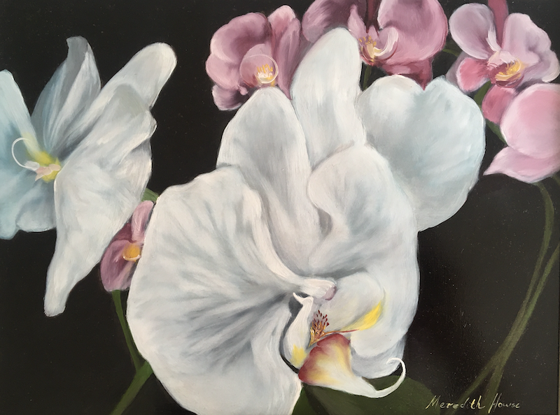 (CreativeWork) The Gap Orchid 1 by Meredith Howse. oil-painting. Shop online at Bluethumb.