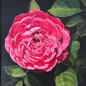 (CreativeWork) Tuscan Rose by Dennis Arnold. oil-painting. Shop online at Bluethumb.