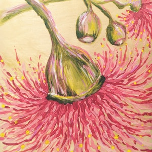 (CreativeWork) Flowering Gum 5 by Nevena Nikolic. acrylic-painting. Shop online at Bluethumb.