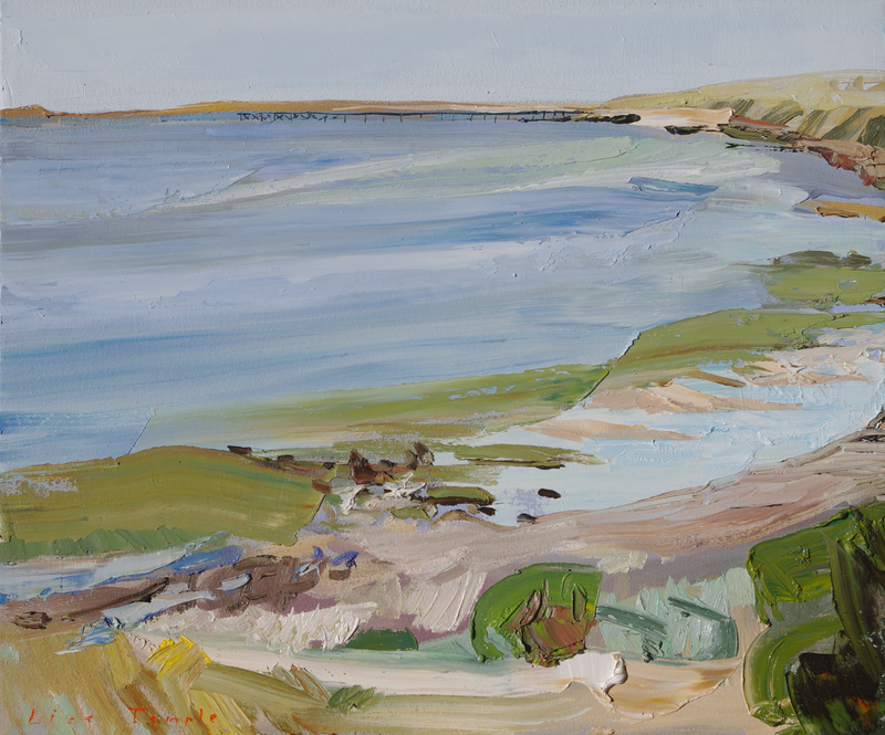 (CreativeWork) Port Victoria by Lise Temple. Oil Paint. Shop online at Bluethumb.