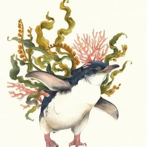 (CreativeWork) The Penguin & The Kelp by Lamice Ali. watercolour. Shop online at Bluethumb.