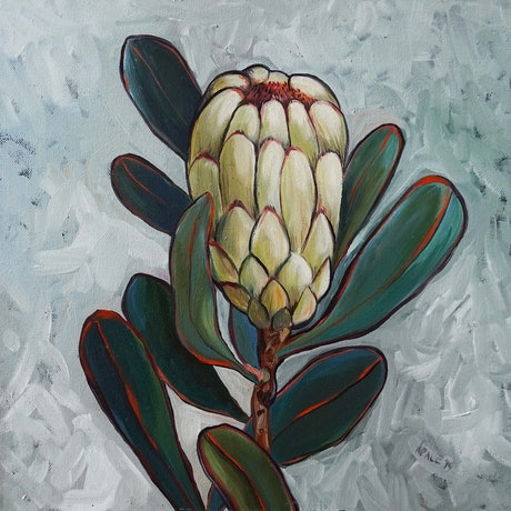 (CreativeWork) Protea II by Katerina Apale. Oil Paint. Shop online at Bluethumb.