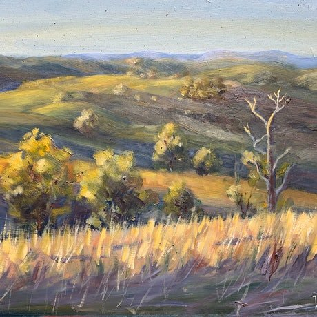 (CreativeWork) Last light over the blue mountains  by Shelly Du. Oil Paint. Shop online at Bluethumb.