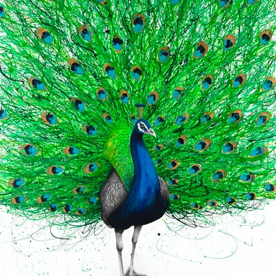 (CreativeWork) Prancing Peacock by Ashvin Harrison. Acrylic Paint. Shop online at Bluethumb.