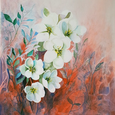 (CreativeWork) The Noble Magnolia by Lucinda Leveille. Watercolour Paint. Shop online at Bluethumb.