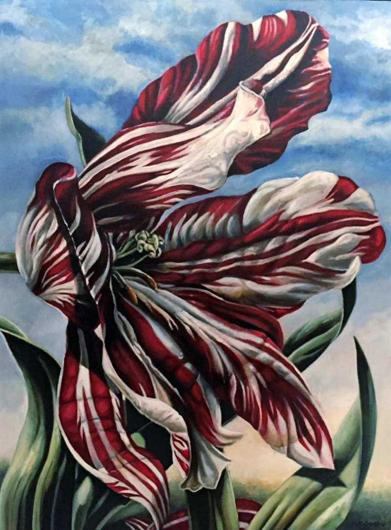 (CreativeWork) Red and White Tulip by Kerry Doran. Oil Paint. Shop online at Bluethumb.