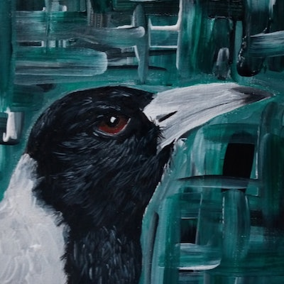 (CreativeWork) MC The Magpie by Ilanit Pocock. acrylic-painting. Shop online at Bluethumb.