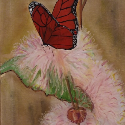 (CreativeWork) Butterfly,s bliss by Debbie Scott. acrylic-painting. Shop online at Bluethumb.