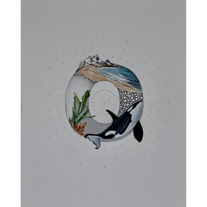 (CreativeWork) O is for Orca by Bonnie Larden. mixed-media. Shop online at Bluethumb.