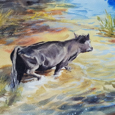 (CreativeWork) Shallow Crossing by Anica Amphlett. watercolour. Shop online at Bluethumb.