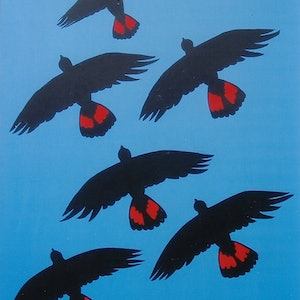 (CreativeWork) Red Tailed Black Cuckoos by Margaret Gurney. Acrylic Paint. Shop online at Bluethumb.