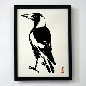 (CreativeWork) Australian Magpie by Donald Paull. Drawings. Shop online at Bluethumb.