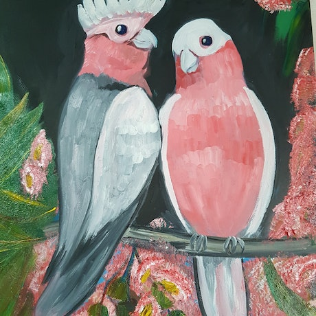 "(CreativeWork) ""Pink Galahs"" by Glenda McLachlan. Oil Paint. Shop online at Bluethumb."