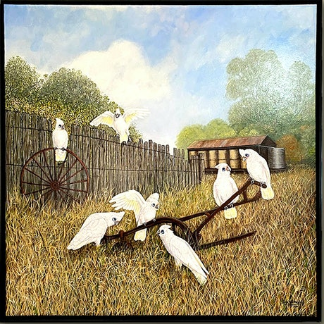 (CreativeWork) Little Corellas playing in Australian Farm Landscape by Wendy A. Greenwood. Acrylic Paint. Shop online at Bluethumb.