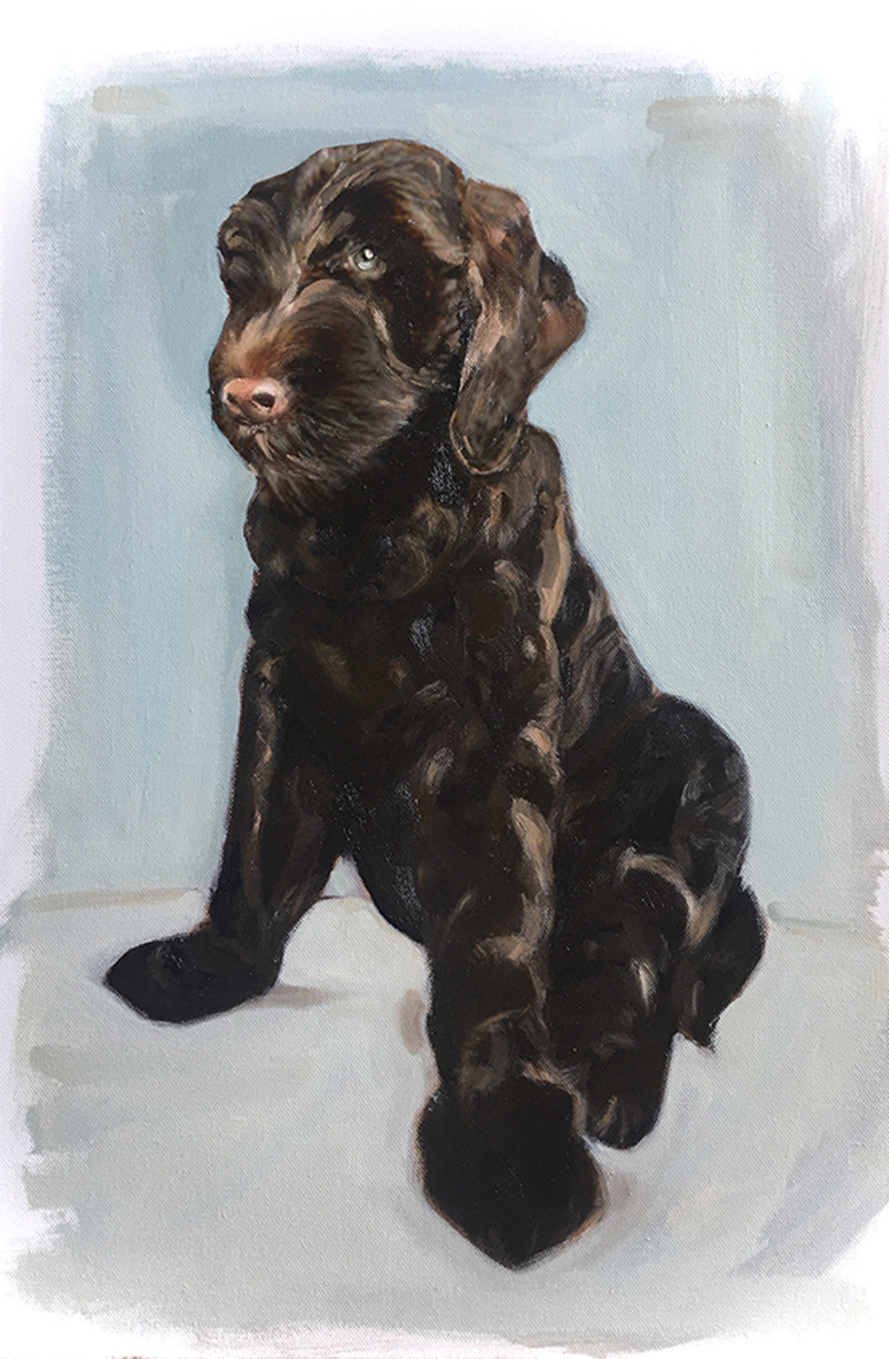 (CreativeWork) Big Ted by Donna Christie. Oil Paint. Shop online at Bluethumb.
