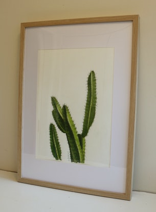 (CreativeWork) Cactus No 1 by Bec Bartell. Watercolour Paint. Shop online at Bluethumb.