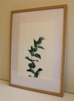 (CreativeWork) Eucalyptus Branch No 1 by Bec Bartell. Watercolour Paint. Shop online at Bluethumb.