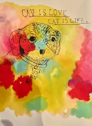 (CreativeWork) Cavalier is Love by Carla Valeri. Watercolour Paint. Shop online at Bluethumb.
