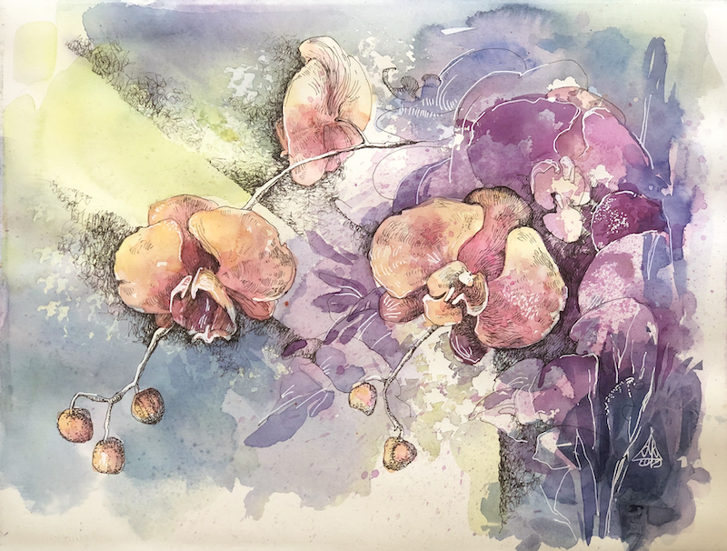 (CreativeWork) Ochids by Larissa Fraser. Watercolour Paint. Shop online at Bluethumb.